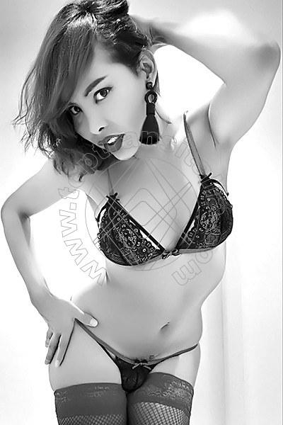 Asia Ladyboy NOVARA 3895203577